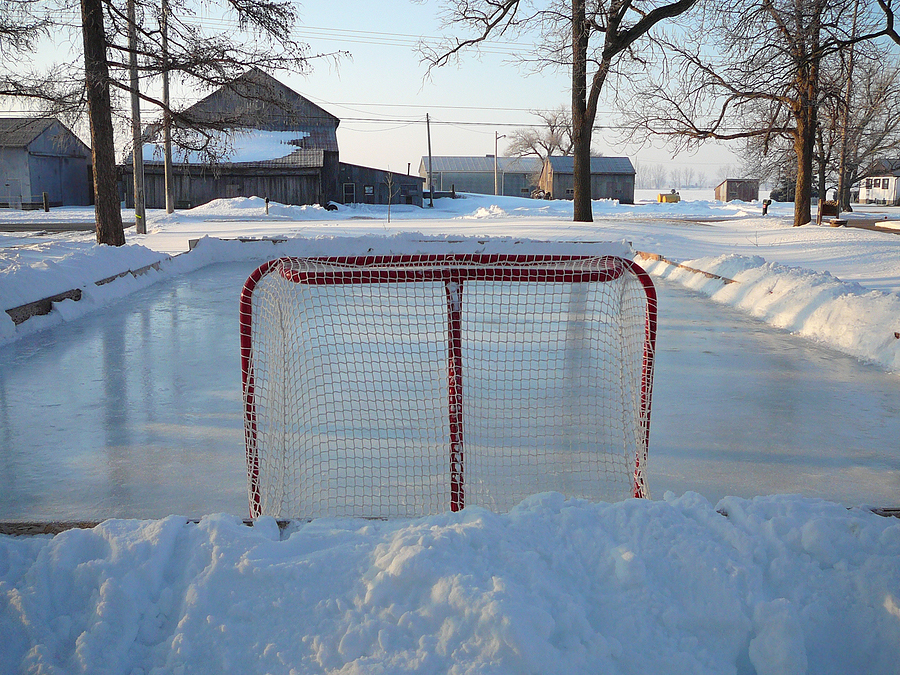 Living on Earth: The Thrills and Spills of Backyard Hockey
