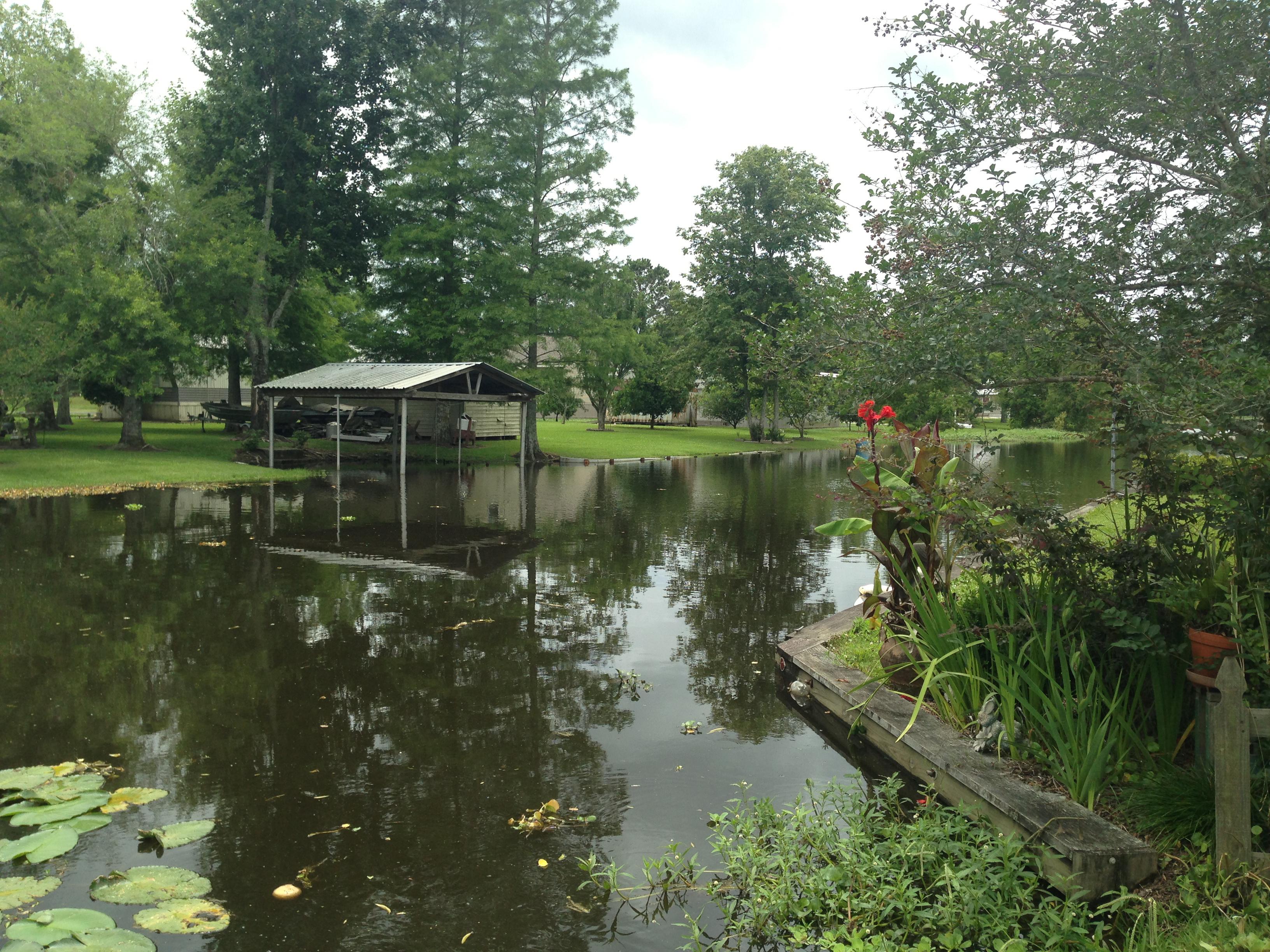 Living On Earth Bayou Community Struggles With Sinkhole