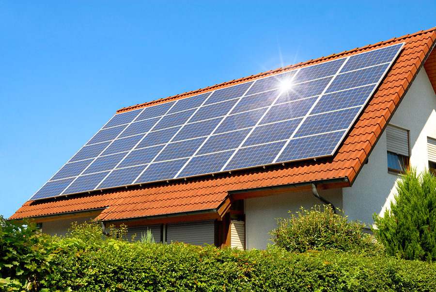Living on Earth: Overwhelming the Grid with Renewable Energy