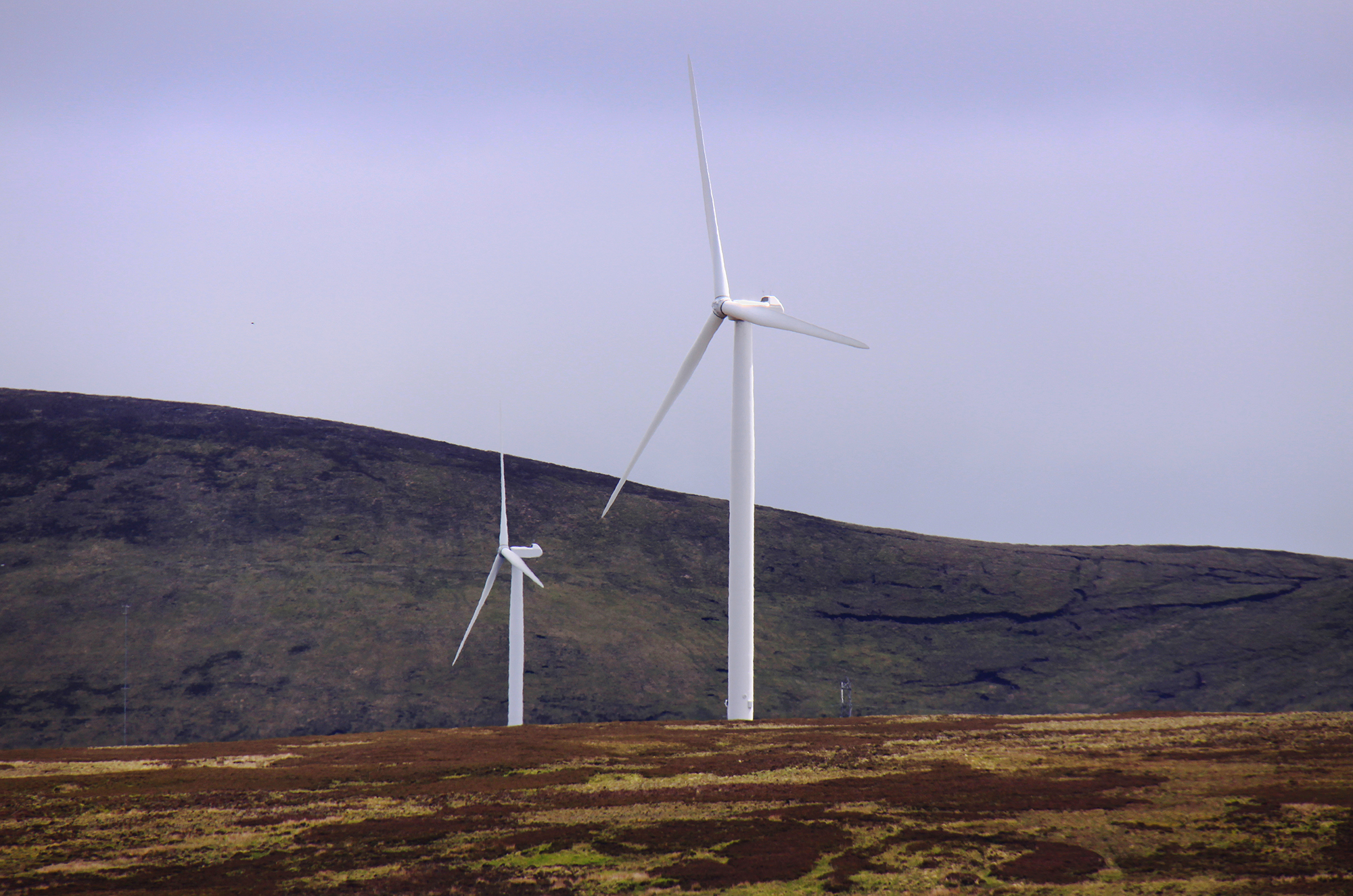 Living on Earth: Scottish Independence from High-Carbon